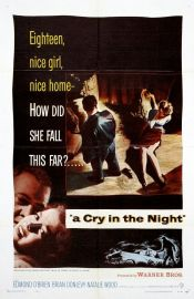 A Cry in the Night Poster