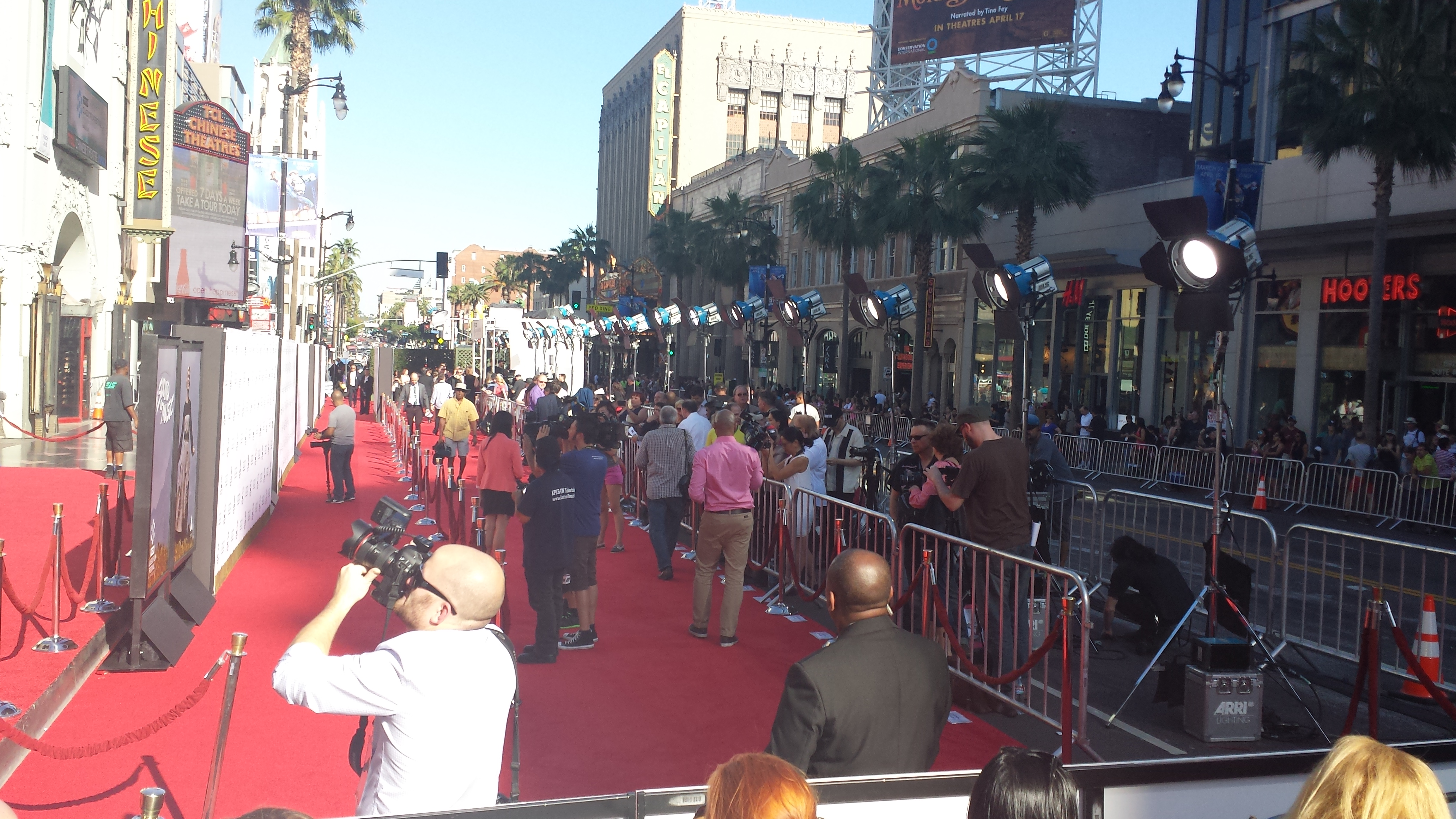A view of the red carpet from the bleachers.